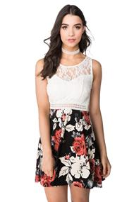 Lace and Rose Print Skater Dress