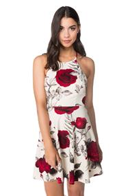 Rose Print Skater Dress with Open Criss Cross Back